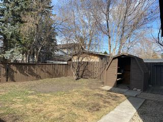 Photo 34: 425 Big Springs Drive SE: Airdrie Detached for sale : MLS®# A1087684