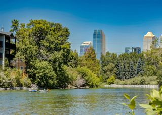 Photo 32: 203 2411 Erlton Road SW in Calgary: Erlton Apartment for sale : MLS®# A1125837