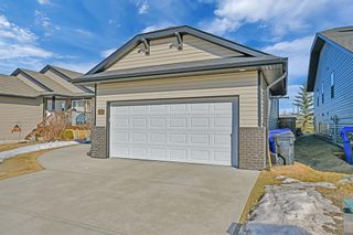 Photo 28: 101 Willow Green: Olds Detached for sale : MLS®# A1143950