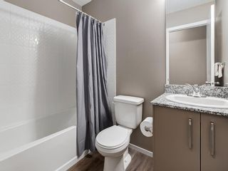 Photo 20: 1611 4641 128 Avenue NE in Calgary: Skyview Ranch Apartment for sale : MLS®# A1029088
