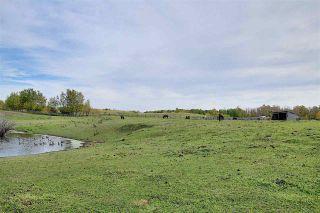 Photo 43: 860 41 Avenue in Edmonton: Zone 53 House for sale : MLS®# E4215390