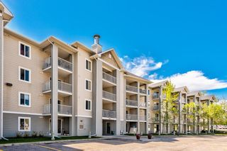 Photo 30: 3209 1620 70 Street SE in Calgary: Applewood Park Apartment for sale : MLS®# A1116068
