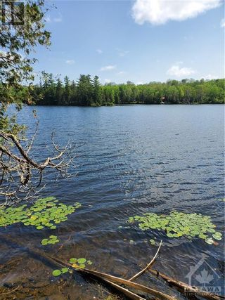 Photo 11: 2600 CLYDE LAKE ROAD in Lanark: Vacant Land for sale : MLS®# 1253879