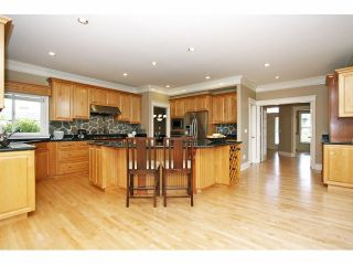 Photo 10: 2125 138A Street in Surrey: Elgin Chantrell House for sale (South Surrey White Rock)  : MLS®# F1320122