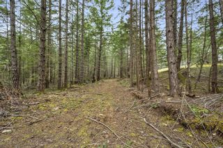 Photo 20: Lot A Armand Way in : GI Salt Spring Land for sale (Gulf Islands)  : MLS®# 871175