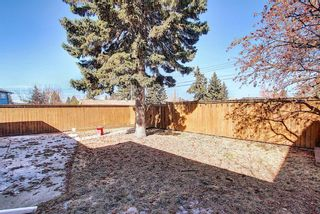 Photo 44: 56 Langton Drive SW in Calgary: North Glenmore Park Detached for sale : MLS®# A1081940