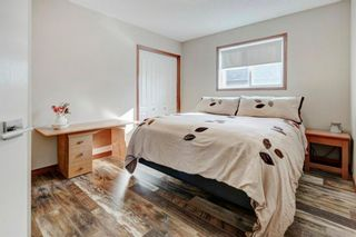 Photo 19: 327 Sagewood Landing SW: Airdrie Detached for sale : MLS®# A1149065
