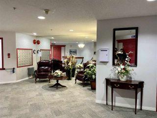 Photo 5: 203 17511 98A Avenue in Edmonton: Zone 20 Condo for sale : MLS®# E4224086