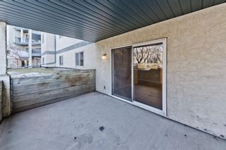 Photo 25: 103 11 Dover Point SE in Calgary: Dover Apartment for sale : MLS®# A1083330