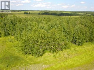 Photo 3: Lot 1 WILLOWSIDE ESTATES in Rural Woodlands County: Vacant Land for sale : MLS®# AW51352
