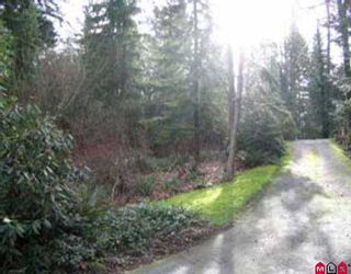 Photo 7: 15715 MOUNTAIN VIEW DR in Surrey: Grandview Surrey House for sale (South Surrey White Rock)  : MLS®# F2602538