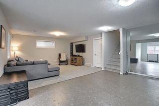 Photo 44: 138 Nolanshire Crescent NW in Calgary: Nolan Hill Detached for sale : MLS®# A1100424