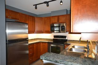 Photo 4: 206 675 PARK CRESCENT in New Westminster: GlenBrooke North Condo for sale : MLS®# R2059305