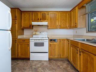 Photo 7: 40 Castlepark Road NE in Calgary: Castleridge Detached for sale : MLS®# A1146252