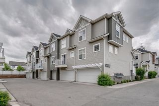 Photo 38: 385 Elgin Gardens SE in Calgary: McKenzie Towne Row/Townhouse for sale : MLS®# A1115292