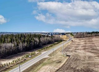 Photo 9: 54229 BELLEROSE Drive: Rural Sturgeon County Land Commercial for sale : MLS®# E4248728