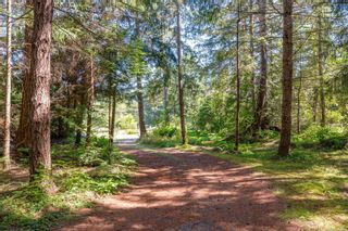 Photo 73: 6620 Rennie Rd in : CV Courtenay North House for sale (Comox Valley)  : MLS®# 851746