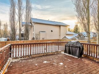 Photo 32: 9 Cambria Place: Strathmore Detached for sale : MLS®# A1051462