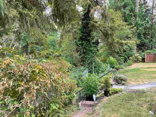 Photo 10: 23553 DOGWOOD Avenue in Maple Ridge: East Central House for sale : MLS®# R2600353