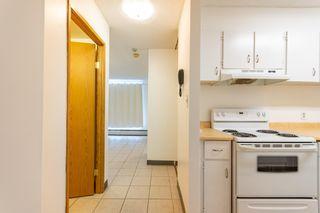 Photo 4:  in Edmonton: Zone 02 Condo for sale : MLS®# E4246424