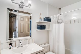Photo 32: 274 Fresno Place NE in Calgary: Monterey Park Detached for sale : MLS®# A1149378