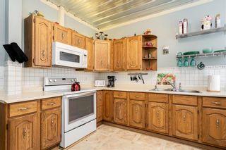 Photo 13: 157 Chestnut Street in Winnipeg: Wolseley Residential for sale (5B)  : MLS®# 202024846