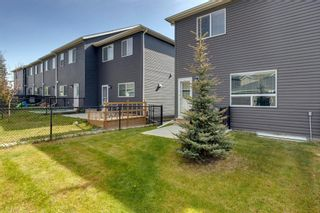 Photo 33: 971 Nolan Hill Boulevard NW in Calgary: Nolan Hill Row/Townhouse for sale : MLS®# A1114155