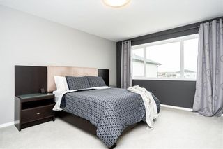 Photo 19: 50 Tom Nichols Place in Winnipeg: Canterbury Park Residential for sale (3M)  : MLS®# 202112482