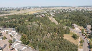 Photo 22: 40 BLACKBURN Drive W in Edmonton: Zone 55 House for sale : MLS®# E4255224
