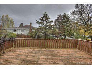 Photo 17: 3106 Balfour Ave in VICTORIA: Vi Burnside House for sale (Victoria)  : MLS®# 716627