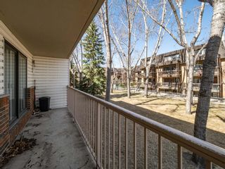 Photo 3: 213 3420 50 Street NW in Calgary: Varsity Apartment for sale : MLS®# A1095865