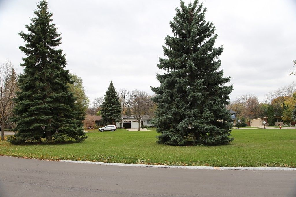 Photo 5: Photos: 86 Tamarind Drive in Winnipeg: Fraser's Grove Single Family Detached for sale (3C)  : MLS®# 1628027