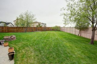 Photo 30: 325 CORAL SPRINGS Place NE in Calgary: Coral Springs Detached for sale : MLS®# A1066541