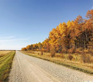 Photo 34: Brown Acreage in Barrier Valley: Residential for sale (Barrier Valley Rm No. 397)  : MLS®# SK824281