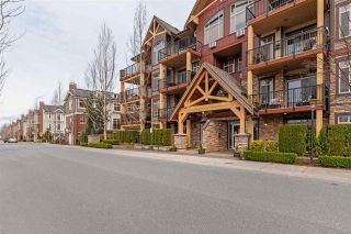 """Photo 1: 115 8328 207A Street in Langley: Willoughby Heights Condo for sale in """"YORKSON CREEK"""" : MLS®# R2550211"""