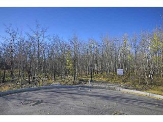 Photo 16: 30 POSTHILL Drive SW in CALGARY: The Slopes Vacant Lot for sale (Calgary)  : MLS®# C3555847