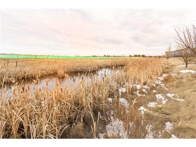 Photo 42: Photos: 664 LUXSTONE Landing SW: Airdrie House for sale : MLS®# C4106944