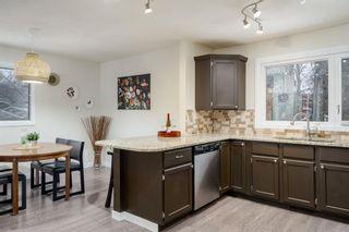 Photo 10: 523 Deermont Court SE in Calgary: Deer Ridge Detached for sale : MLS®# A1050055