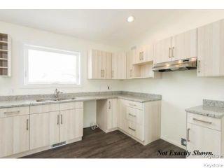 Photo 5: 434 Collegiate Street in Winnipeg: St James Residential for sale (West Winnipeg)  : MLS®# 1528614