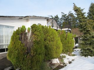 Photo 7: 4172 Glanford Ave in : SW Glanford House for sale (Saanich West)  : MLS®# 866471