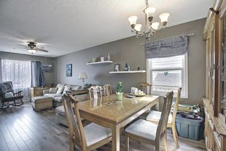 Photo 9: 367 Maitland Crescent NE in Calgary: Marlborough Park Detached for sale : MLS®# A1093291