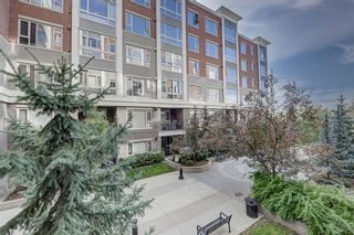 Photo 3: 211 35 Inglewood Park SE in Calgary: Inglewood Apartment for sale : MLS®# A1149427