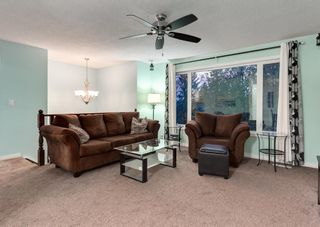 Photo 4: 205 RUNDLESON Place NE in Calgary: Rundle Detached for sale : MLS®# A1153804