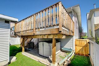 Photo 44: 2115 24 Avenue NE in Calgary: Vista Heights Detached for sale : MLS®# A1018217
