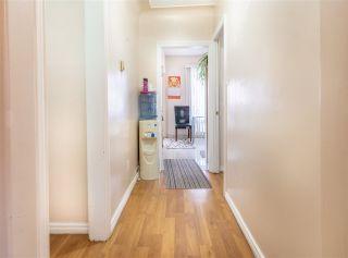 Photo 7: 10709 112 Street in Edmonton: Zone 08 House for sale : MLS®# E4236894