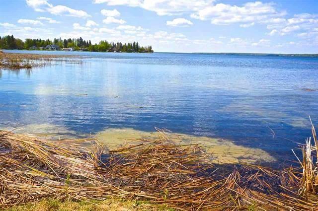 Main Photo: 100/102 545165 Ste. Anne Trail: Rural Lac Ste. Anne County Rural Land/Vacant Lot for sale : MLS®# E4235029
