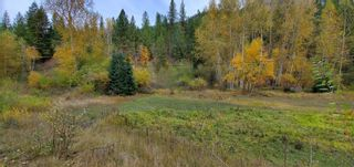 Photo 5: 789 Shuswap River Drive, in Lumby: House for sale : MLS®# 10240114