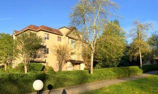 """Photo 1: E203 40180 WILLOW Crescent in Squamish: Garibaldi Estates Condo for sale in """"Diamond Head Place"""" : MLS®# R2075103"""