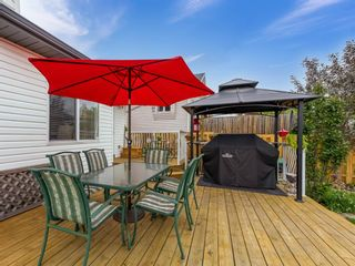 Photo 29: 101 Appleside Close SE in Calgary: Applewood Park Detached for sale : MLS®# A1128476