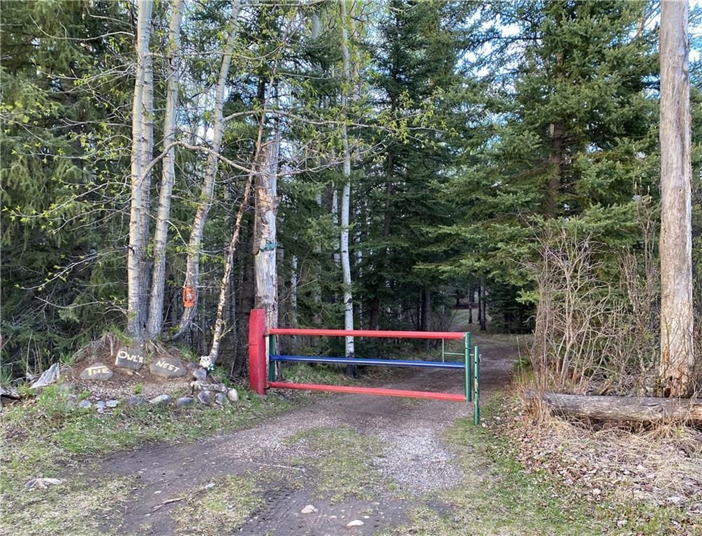 Your own private drive into your 2 acres portion of a move in ready recreational parcel.